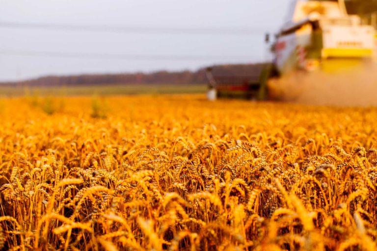 Adatta agli agricoltori