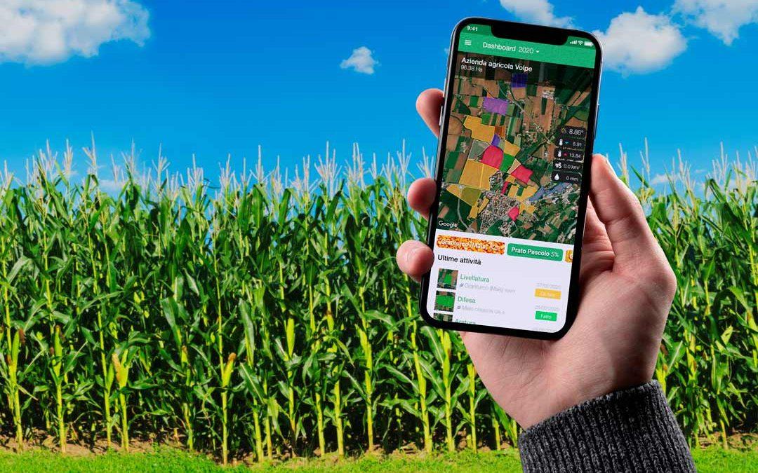 xFarm a servizio dei cerealicoltori: i vantaggi del digitale