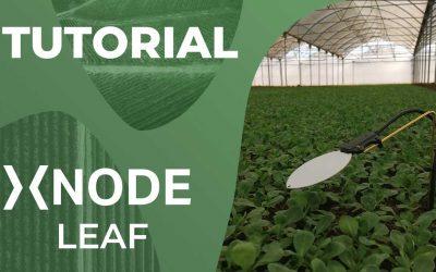Sensore di bagnatura fogliare xNode Leaf