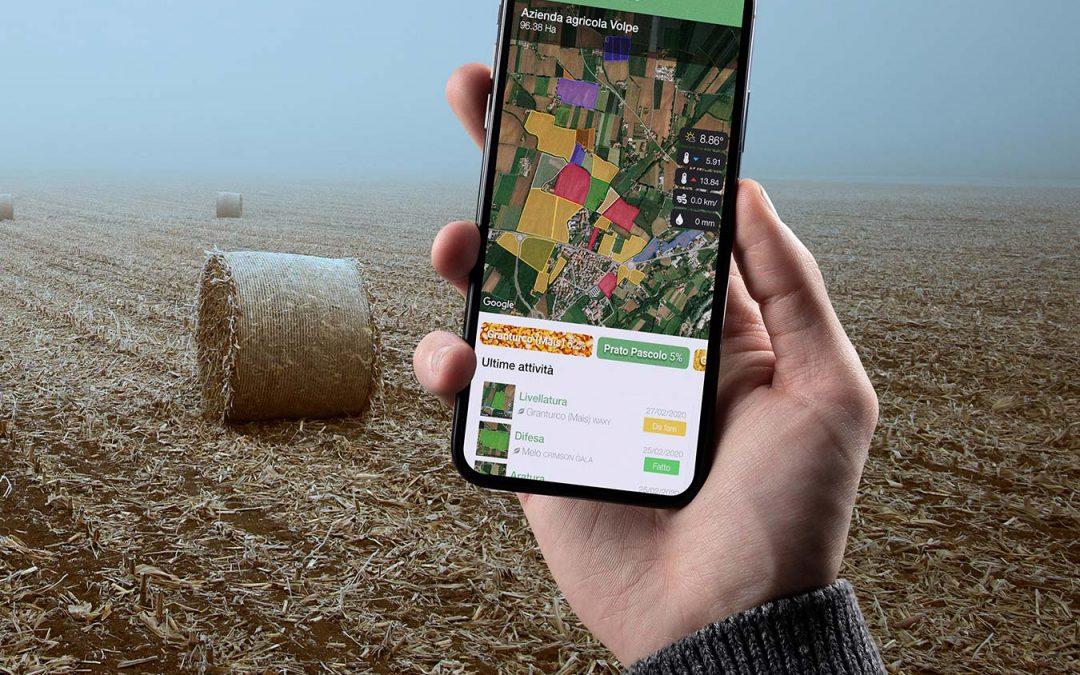 xFarm, la soluzione digital pensata per la filiera agricola