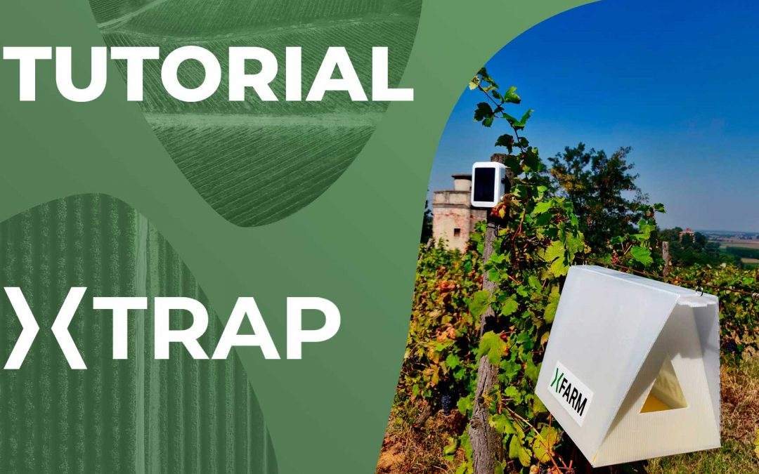 Trappola automatica per il monitoraggio degli insetti xTrap